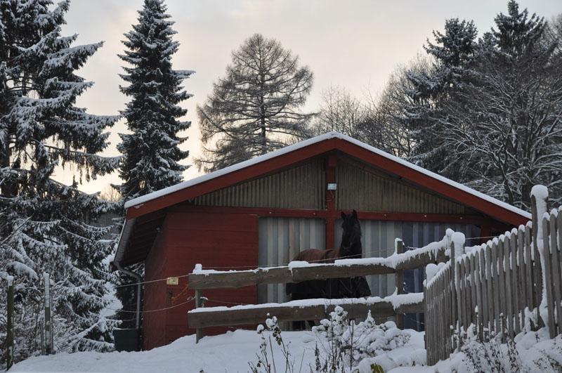 offenstall_winter